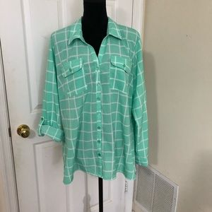"Kim Rogers ""Curvy"" green a white checkered blouse"